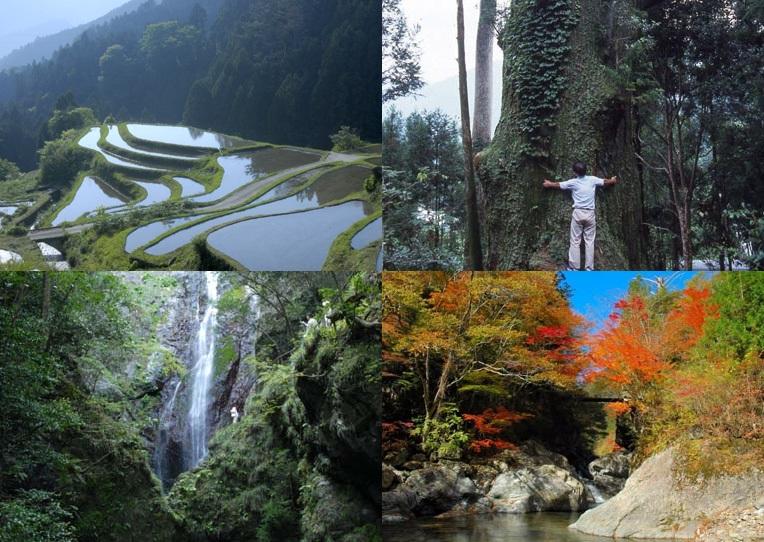 【徳島県】上勝町 田舎暮らし体験したい方を募集します!!(モニター居住体験と交流)
