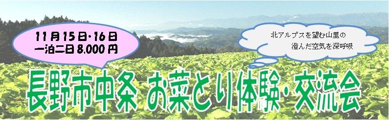 長野市中条お菜とり体験・交流会