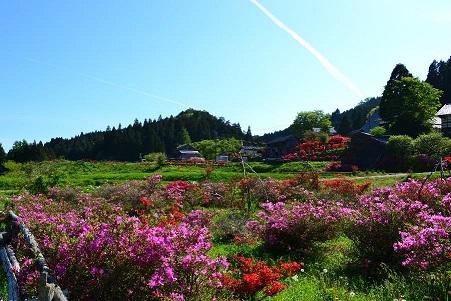 【石川県】石川県で一番東京に近い町 穴水町暮らしセミナー